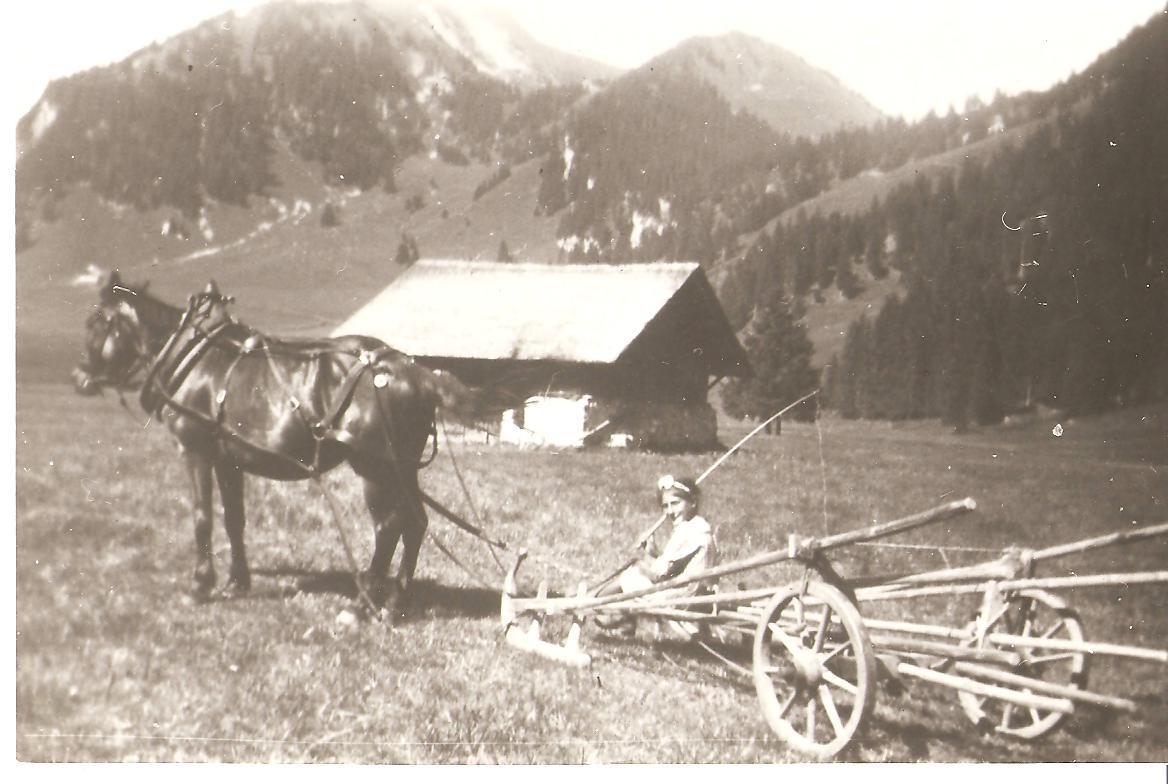 Travaux aux champs