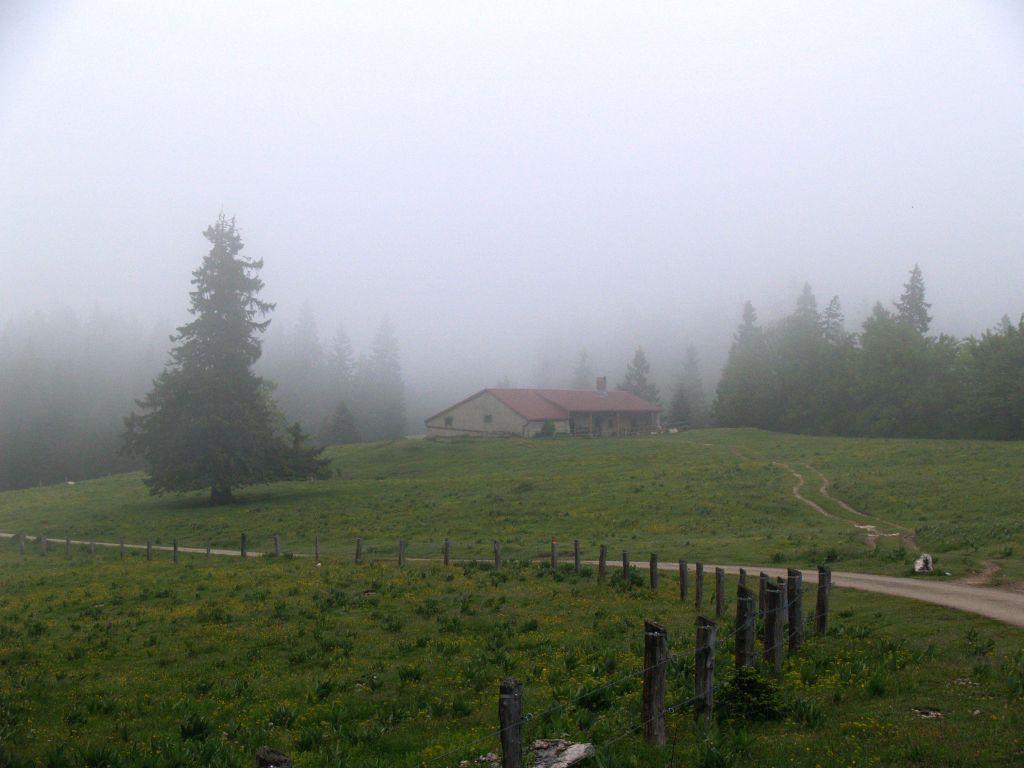 Perroude du Vaud