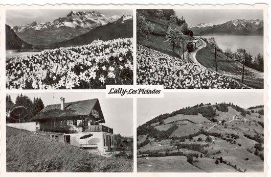 Lally - Les Pléiades