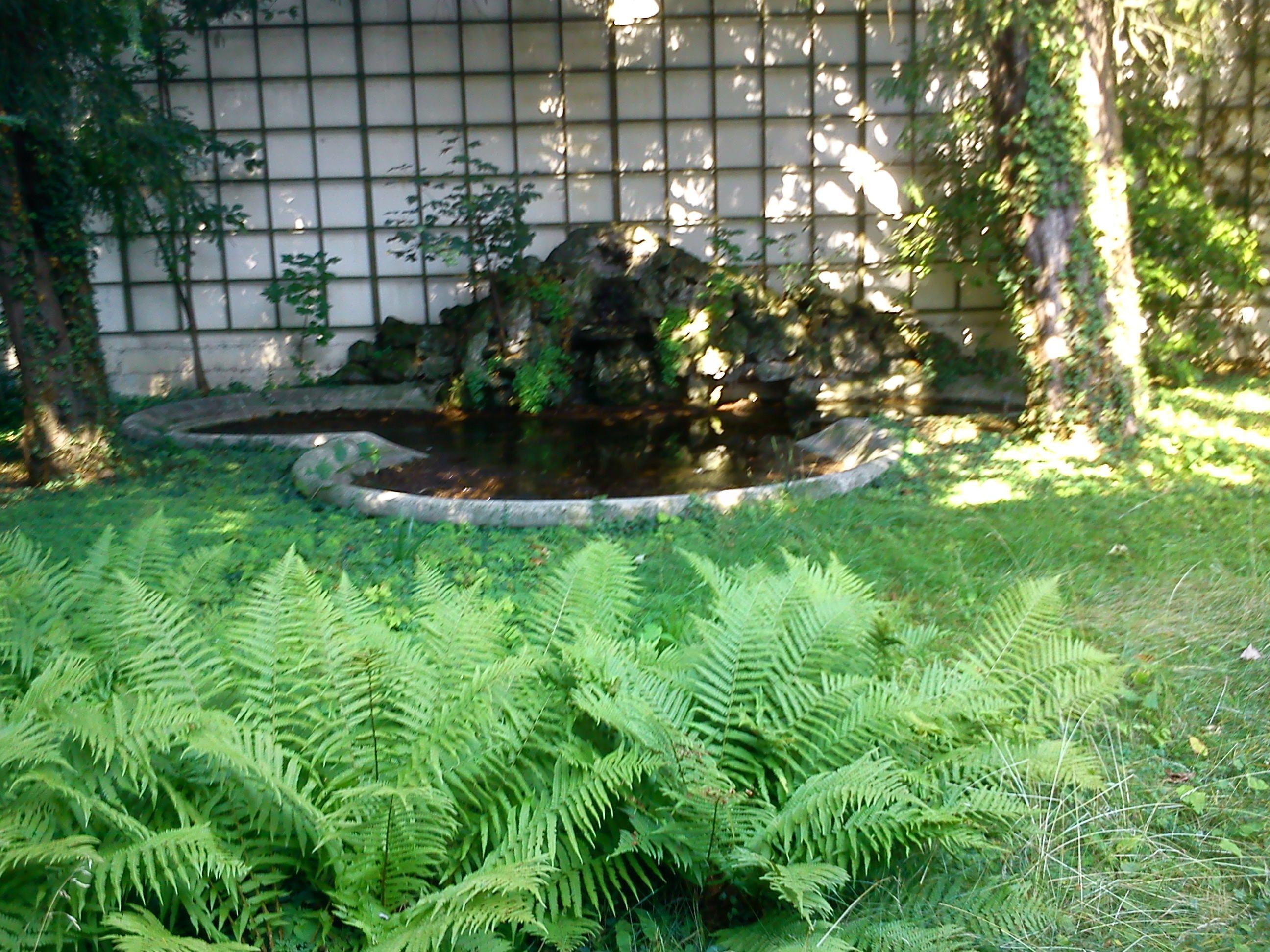 jardin romantique au coeur de vevey notre histoire. Black Bedroom Furniture Sets. Home Design Ideas