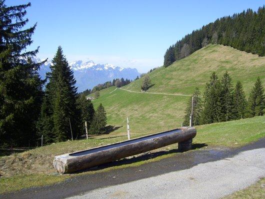 La Planniaz, fontaine en bois à proximité de la cabane du Club Alpin