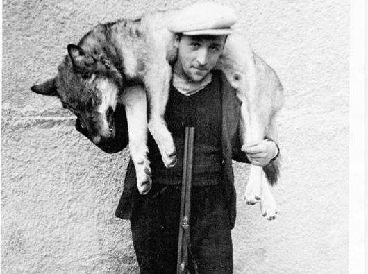 Albin Brunner portant le loup d'Eischoll