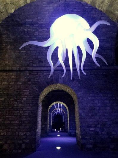 Lausanne Festival Lumières 2013 - Arches du Grand-Pont