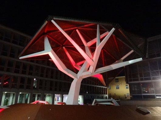 L'arbre de Flon-Ville illuminé