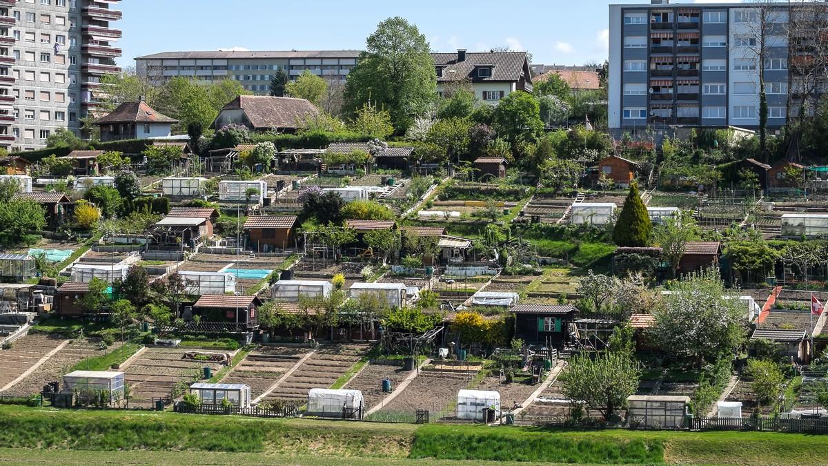 Jardins familiaux notre histoire for Jardin familiaux