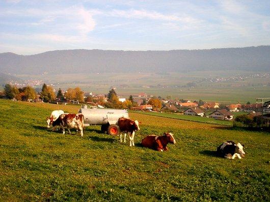 Paisible Val-de-Ruz