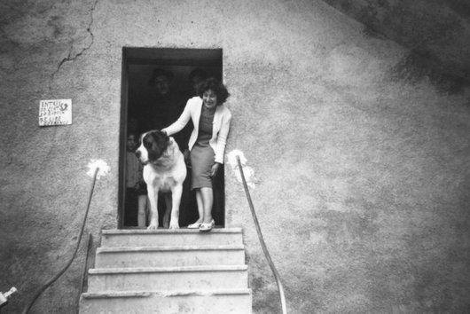Saint-Bernard 1959