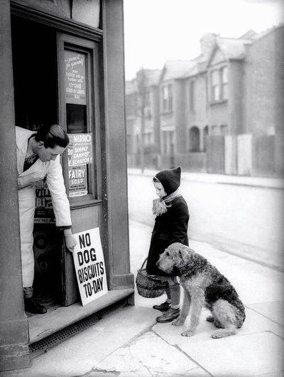 La fillette et son ami le chien....