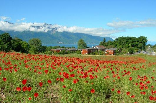 Montreux La Saussaz