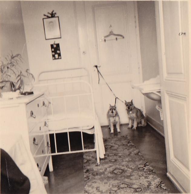 la chambre de bonne 1950 notre histoire. Black Bedroom Furniture Sets. Home Design Ideas