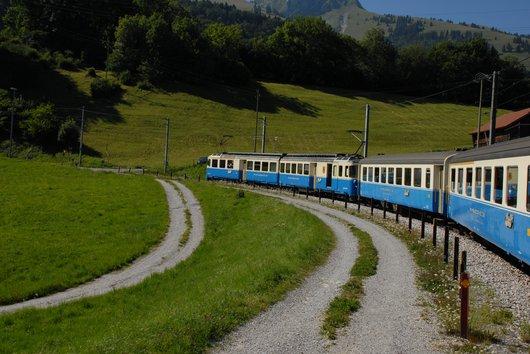 MOB-Golden Pass
